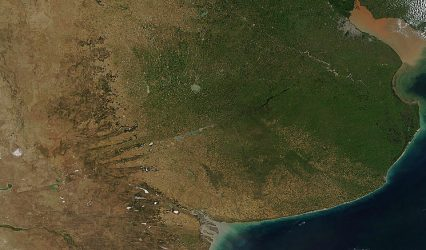 Vegetación de la Argentina en Sobre la Tierra